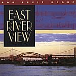 Rob Levit East River View
