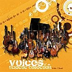 Wake Clinard Voices Of An Eclectic Collection