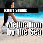 Nature Sounds Meditation By The Sea (Nature Sound)