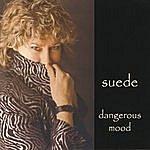 Suede Dangerous Mood