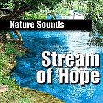 Nature Sounds Stream Of Hope (Nature Sound)