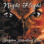 Stephen Standing Owl Night Flight