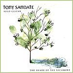 Tony Sandate The Shade Of The Sycamore