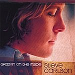 The Steve Carlson Band Groovin' On The Inside