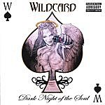 Wild Card Dark Night Of The Soul (Parental Advisory)