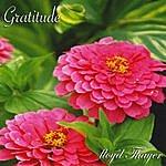 Lloyd Thayer Gratitude