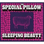 The Special Pillow Sleeping Beauty