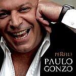 Paulo Gonzo Perfil