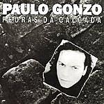 Paulo Gonzo Pedras Da Calçada