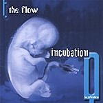 The Flow Incubation