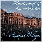 Mantovani & His Orchestra Strauss Waltzes