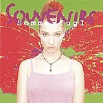 The Souvenirs Sommerfugl