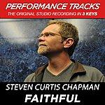Steven Curtis Chapman Faithful (Premiere Performance Plus Track)