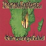 Thomas Mapfumo Chimurenga Rebel/Manhungetunge