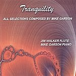 Mike Garson Tranquility