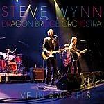 Steve Wynn Live In Brussels