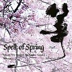 Elizabeth Falconer Spell Of Spring: Selected Works Of Sawai Tadao (Volume I)