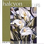 Halcyon Close Ups