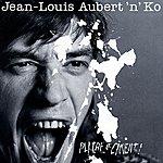 Jean-Louis Aubert Plâtre Et Ciment