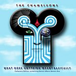 The Chameleons UK What Does Anything Mean? Basically (2009 Remaster)