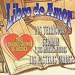 Germain Y Sus Angeles Negros Libro De Amor