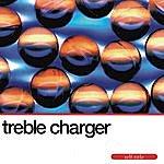Treble Charger Self