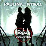 Paulina Rubio Ni Rosas, Ni Juguetes (Mr. 305 Remix)
