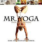 Kush Yoga Lounge Music Vol.2