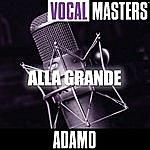 Adamo Vocal Masters: Alla Grande