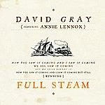 David Gray Full Steam (Single)