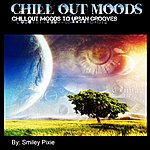 Smiley Pixie Chillout Moods To Urban Grooves