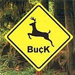 Buck Buck
