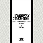 Freeway Know What I Mean (Single)