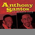 Anthony Santos Anthony Santos