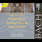 Andrea Marcon Bach, J.s.: Ohrdruf, Luneburg And Arnstadt