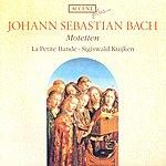 La Petite Bande Bach, J.s.: Motets - Bwv 225-230 (La Petite Bande, Kuijken)