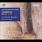 Sigiswald Kuijken Bach, J.s.: Cantatas, Vol. 7 (Kuijken) - Bwv 2, 10, 20