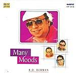 Rahul Dev Burman Many Moods - R.d.burman
