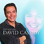 David Cassidy Then And Now (International Version)