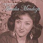 Amalia Mendoza Los Exitos De Amalia Mendoza