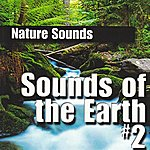 Nature Sounds Sounds Of The Earth Volume #2