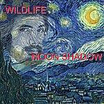 Wild Life Moon Shadow
