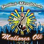 Gottlieb Wendehals Mallorca Ole