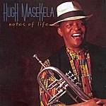 Hugh Masekela Notes Of Life