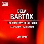 Jenő Jandó Bartok, B.: First Term At The Piano (The) / 4 Piano Pieces / Petits Morceaux / 2 Elegies (Jando)