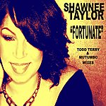 Todd Terry Fortunate - Todd Terry And Mutumbo Mixes