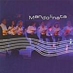 Alain Morisod Mandolinata