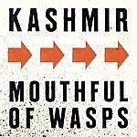 Kashmir Mouthfull Of Wasps (Single)