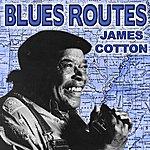James Cotton Blues Routes James Cotton