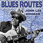 John Lee Hooker Blues Routes John Lee Hooker